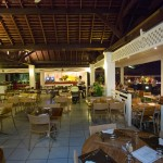 ALAMANDA-restaurant4